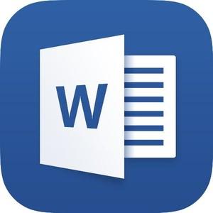 Microsoft Word 16.23.19030902 для Mac OS X
