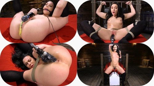 Fresh Meat Whitney Wright Is Bound And Fucked [SD]