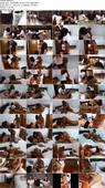 Thaiswinger.com - After Class Thai Bareback Breeding