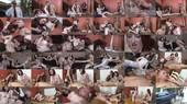 Emma Evins and Kendra James: Full Movies - Emma Evins, Kendra James